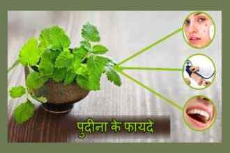 Health and Beauty Benefits Of Mint