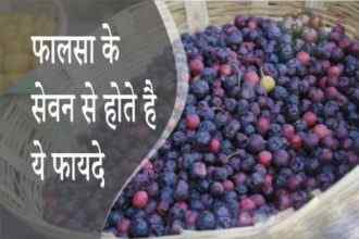 falsa benefits
