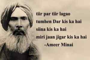 Ameer Minai