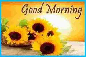 Good Morning Quotes Good Morning Shayari Good Morning Message Good Morning Quotes In Hindi Today Idea Good Morning Shayari Collection