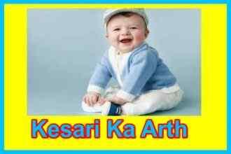 केसरी नाम का अर्थ Kesari naam ka arth